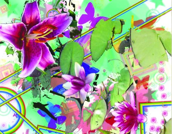DA-rainbow flowers
