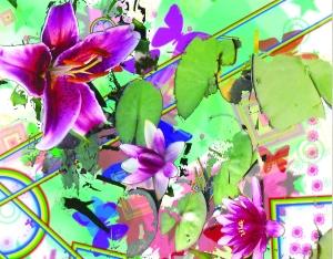 da-rainbow-flowers